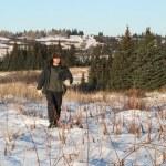 Alaskan walking through the snow — Stock Photo