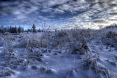Snow and clouds — Stockfoto