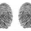 Two fingerprints — Stock Vector #6822241
