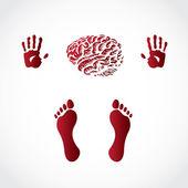 Las manos de sedimentos y el cerebro — Vector de stock