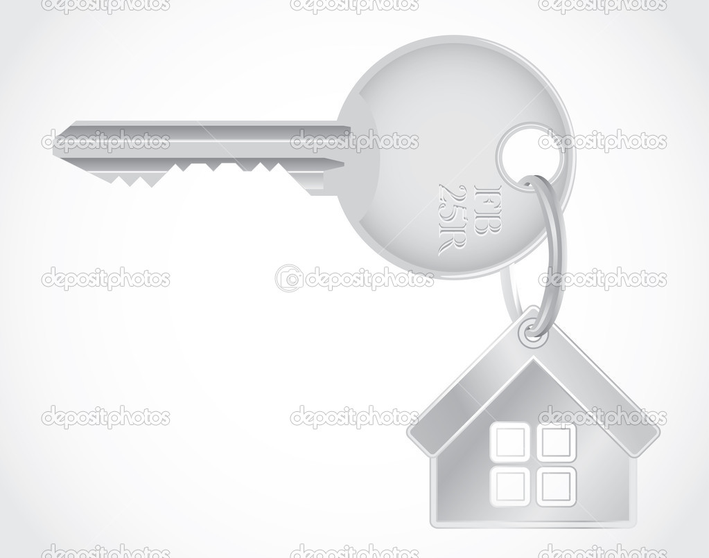Isolated metallic key - detailed realistic illustration — Stock Vector #6822627
