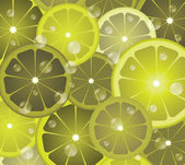 Lime circles — Stock Vector