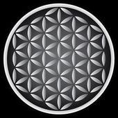 Flower of life symbol — Stock Vector
