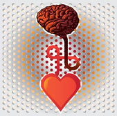 Heart and brain — Stock Vector