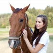 Beautiful young woman is brushing a gorgeous horse — Stock Photo