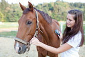 Young woman brushing a beautiful horse. Selective focus. — Stock Photo