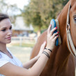 Attractive young woman brushing a horse — Stock Photo