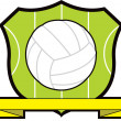 Netball Shield - Stock Photo