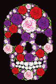 Floral Carnation And Violet Skull — Stock Photo