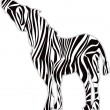 Zebra Print Silhouette — Stock Photo