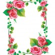 Stock Photo: Frame rose