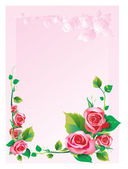 Moldura rosa — Foto Stock