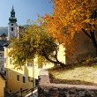 Autumn in Banska Stiavnica, Slovakia UNESCO — Stock Photo #7466620