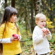 Stock Photo: Little boy and little girl eating apples in forest