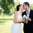 Bride and groom kissing each other outdoors — Stock Photo #7533987
