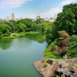 A pond in New York City Central Park in summer - Stock Photo