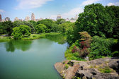 A pond in New York City Central Park in summer — Stock Photo