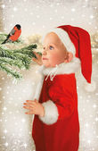 Baby Santa and bullfinch — Stock Photo