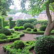 Garden pathway — Stock Photo #7042649
