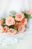 Beautiful roses on a white background — Stok fotoğraf