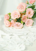 Beautiful roses on a white background — Foto Stock