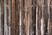 Grunge bamboo textured — Stock Photo