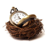 Nurture Your Time — Stock Photo