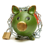 Protect Your Money — Stock Photo