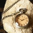 Pocket Watch — Stock Photo #7786783