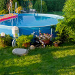 Stock Photo: Pool in a Garden