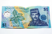 Bruneian Currency — Stock Photo