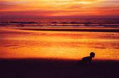 The child creeps on a beach against a decline — Stock Photo