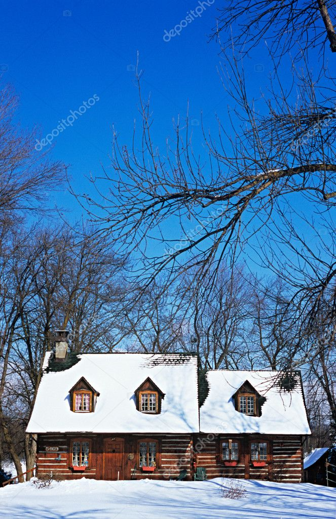 Snow covered cabin — Stock Photo #7035800