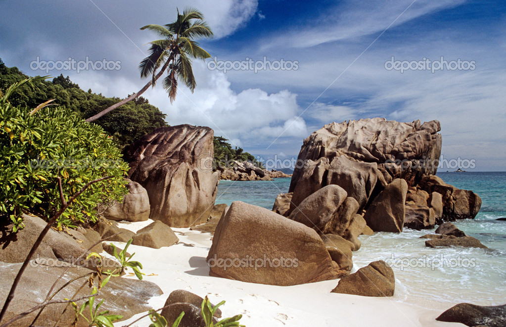 Rocks on a beach in the seychelles  Stock Photo #7040711