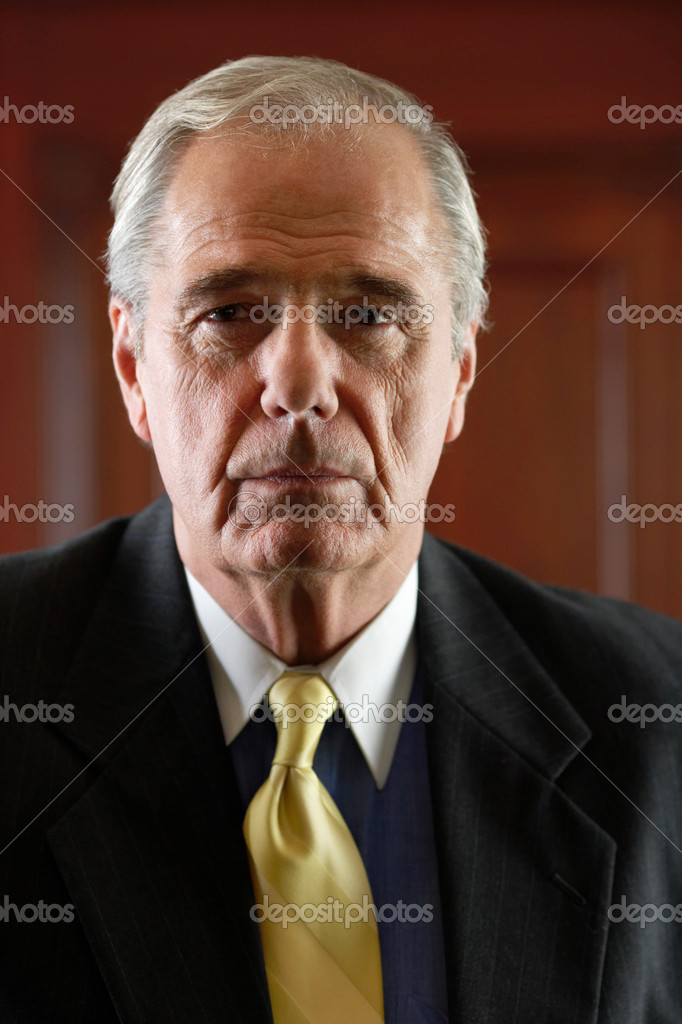 Portrait of a ceo — Stock Photo #7049677