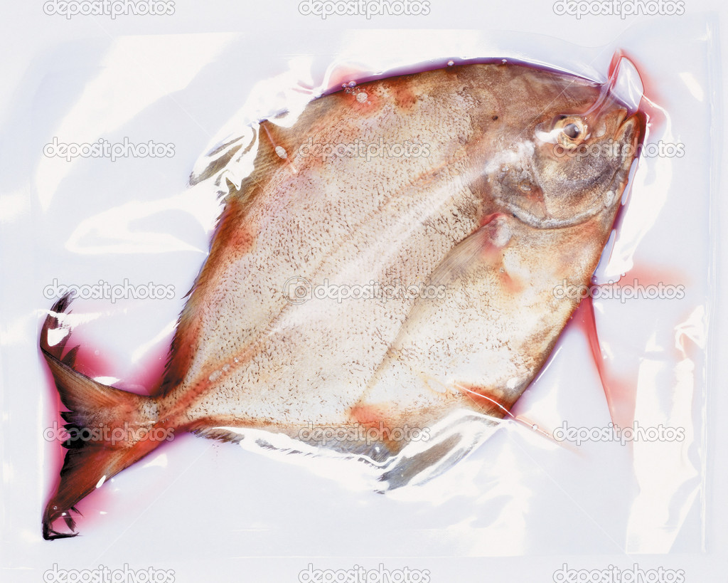 Packaged plaice  Stock Photo #7051169