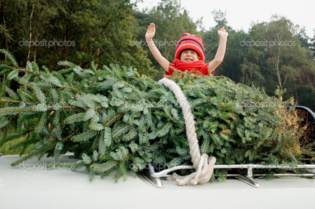 Child and christmas tree on car roof — Stock Photo #7078033