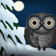 Royalty-Free Stock Vector Image: Owl sitting at night on snowed tree