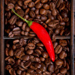 Stock Photo: Red chili and coffee beans