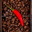 Red chili and coffee beans — Stock Photo