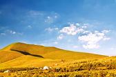 Pianura con erba sotto il cielo blu — Foto Stock