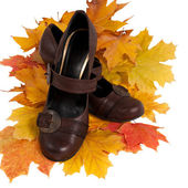 Women's shoes on colorful autumn leaves — Stock Photo