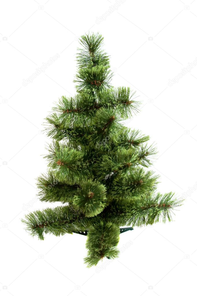 The Christmas tree ready to decorate isolated on white background — Stock Photo #7869619