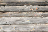 Logs in the wall — Stock Photo