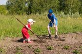 Mladistvý zemědělci. — Stock fotografie