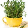 Bunch of thyme. — Stock Photo