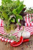 Herbs. — Stock Photo