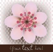 Single blossomed cherry flower card — Stock Vector