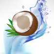 Broken coconut and leaves in splash of water  — Stock Vector