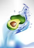 Fresh avocado fruit in splash of water — Stock Vector